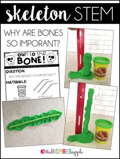 Teaching the skeletal system has never been more fun! Your kids will love learning all about bones using these fun and engaging activities and books, perfect for students in kindergarten, first grade, and second grade. The human body can be so interesting, and there are plenty of ideas for using this theme in science, math, art, and reading! It's great for fall and Halloween, too!
