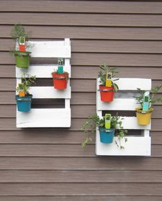 Love these pallet gardens. I guess stuff actually has to grow for them to look right, though.
