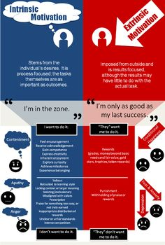 Internal and External Motoivation by wileycordone #Infographic #Motivation