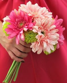 possibility with purple gerbera daisies