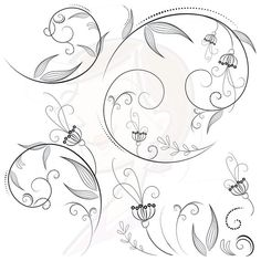 Hey, I found this really awesome Etsy listing at http://www.etsy.com/listing/163879771/flourish-swirls-clip-art-black-floral