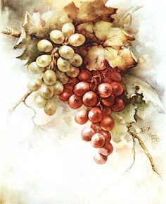 Yellow-Green and Red Grapes China Painting Study by Sonie Ames 1964 Grape Painting, China Painting, Decoupage Vintage, Decoupage Paper, Floral Vintage, Green Grapes, Fruit Art, Pictures To Paint, Painting Patterns