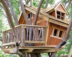 tree house building tips