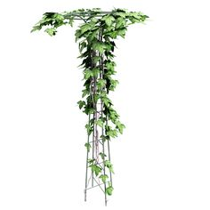 Topiary frames Are you interested in using one of our products and do you still have some questions open? Or would you like to get a quote? WORLDWIDE SHIPPING! Contact us: Mobile: +48 662 611 968 Mobile: +48 666 910 925 www.florapark.pl biuro@florapark.pl