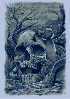shoreline skull