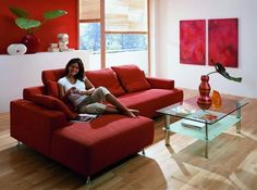 17 Stylish Living Room Designs With Red Couches | Modern living ...