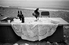 Italian Vintage Photographs ~ Bust, the contrasts of Sicily in the shots of Letizia Battaglia