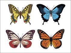de très beaux papillons...