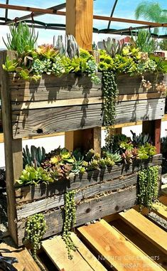 Recycled Pallet Megan Boone recycled pallets to make this succulent planter box. Succulent Landscaping, Succulent Gardening, Container Gardening, Modern Landscaping, Succulents In Containers, Cacti And Succulents, Planting Succulents, Outdoor Plants, Outdoor Gardens