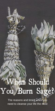 When should you burn sage? The reasons and times when you need to cleanse your life the most. Not all herbal smoke cleansing is smudging, which is specifically about the Native American practice. Smoke cleansing with sage has been seen in many cultures and in modern witchcraft. #sage #smudging #witch #witchcraft #pagan #wicca #occult Smudging Prayer, Sage Smudging, Benefits Of Burning Sage, Sage Plant, Wiccan Spell Book, Witchcraft For Beginners, Spiritual Cleansing, Herbal Magic, Smudge Sticks