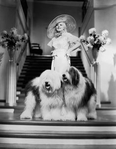 """Jean Harlow in """"Bombshell,"""" with Old English Sheepdogs (1933). #crosscreekvet"""