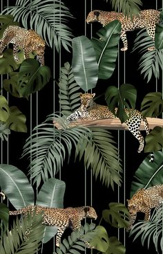 Camilla Frances is a individual print creator leading a team that combines unique personal design sensibilities with traditional hand drawing techniques to craft an ever-growing world of prints Tier Wallpaper, Animal Wallpaper, Pattern Wallpaper, Cheetah Wallpaper, Palm Wallpaper, Motif Jungle, Jungle Art, Jungle Pattern, Jungle Animals
