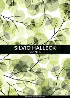 exclusive prints: silviohalleck@gmail.com // colors, fashion, dress, surfwear, luxury, fashionshow, womenswear