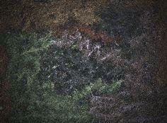 Texture Free Stock Photo - Public Domain Pictures
