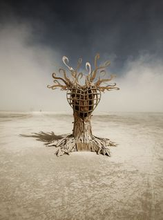 Burning Man is an annual event that takes place in Black Rock, two and a half hours away from Reno Nevada. People describe the Burning Man event as a self-expressive and a self-reliance community.