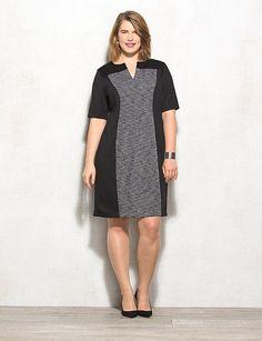 Plus Size Paneled Shift Dress | dressbarn