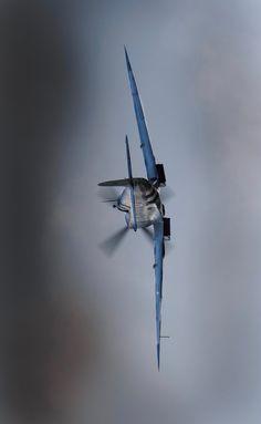 "utwo: "" Spitfire Action © Jonathan Saull """