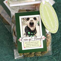 minty fresh dog treats