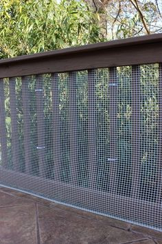 Hog Wire Fence Just For Gate Fence Wire Deck Railing
