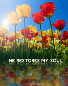 Psalm restoreth my soul: He leadeth me in the paths of righteousness for His name's sake. Jesus Is Lord, Jesus Loves You, Bible Verses Quotes, Scriptures, Christian Inspiration, Daily Inspiration, Inspirational Thoughts, Heavenly Father, Faith In God