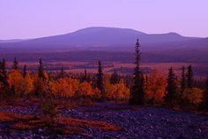 Autumn in Lapland photo credit: Finnish Lapland Film Commission Lapland Finland, Lappland, City Landscape, Earth Tones, Nature Photography, Villa, Around The Worlds, Pictures, Travel