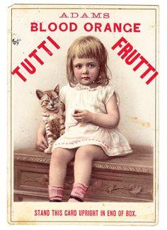 Flea market find - Pec Thing - Pecatonica IL - Adams Blood Orange Tutti Frutti Gum picture card