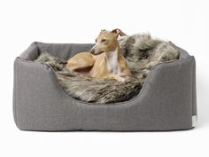 Stunning luxury dog bed with deep, cosy sides & a super-comfy deep-filled mattress to keep your dog in the comfort they deserve. Cosy, stylish, practical.