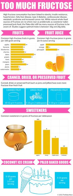 Paleo Fructose Sources Infographic from ThePaleoMom