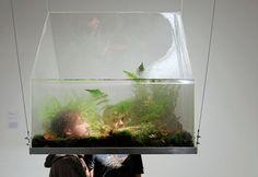 Vaughn Bell: Stick your head in a box full of plants! Environmental Art, Green Art. http://www.vaughnbell.net/