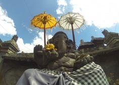 #Bali #indonesia #ubud