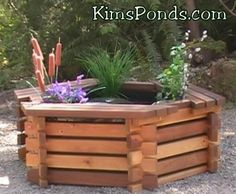 Kim 39 s ponds complete pond kits on pinterest pond kits for Goldfish pond kits