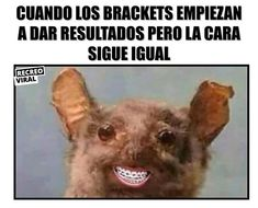 Orthodontics Marketing, Fail, Spanish Songs, Cursed Images, Funny Pictures, Funny Memes, Mood, Instagram, Pine