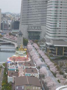 "Camera di ""GRAND INTERCONTINENTAL""(Hotel), Yokohama,  Japan (Aprile)"