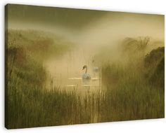 this picture on your wall  http://www.werkaandemuur.nl/index/86/nl/zwanen-in-de-mist/view/16072/0