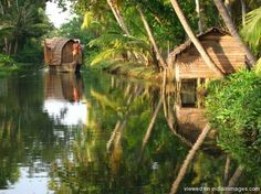 house boats in the back waters of kerala