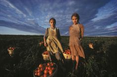 Two Amish girls under a cloud-filled sky with bushels of tomatoes in Lancaster, Pennsylvania. USA.