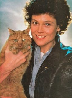 Sigourney Weaver as Ellen Ripley in Alien, with her beautiful orange tom. I must say I was more worried about the cat's wellness than I was about the alien when I first watched the film. Crazy Cat Lady, Crazy Cats, I Love Cats, Cool Cats, Celebrities With Cats, Celebs, Sigourney Weaver, Cat People, Jolie Photo