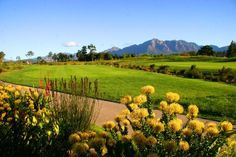 A selection of the finest luxury Golf Estates and Lifestyle Estates available throughout South Africa Golf Estate, Luxury Estate, Cape Town, South Africa, Golf Courses, Vineyard, Pearl, Outdoor, Outdoors