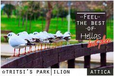 #park #Athens