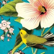 Lilla Rogers » Blog Archive » Cartolina