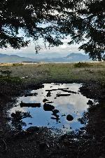 Fotografie Spre Lumină (ieșind În Poiana Calului) (Peisaje) - Poze - Muntii Calimani Golf Courses, Mountains, Nature, Travel, Naturaleza, Trips, Viajes, Traveling, Outdoors