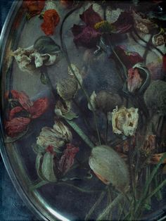 dead flowers - representing Rosinas loss of innosence and virginity.