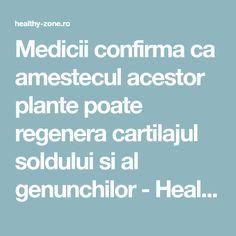 Medicii confirma ca amestecul acestor plante poate regenera cartilajul soldului si al genunchilor - Healthy Zone Health And Wellness, Health Fitness, Metabolism, Good To Know, Diy And Crafts, Medicine, Healthy, Pixi, Plant