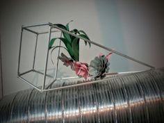 Geometrie e fiori di carta