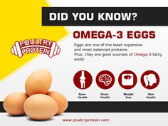 Omega 3 fatty acid benefits for your health !!! Visit us @ www.poultryprotein.com