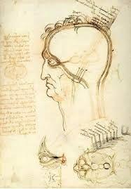 Estudios de anatomía humana del ojo por Leonardo Da Vinci.