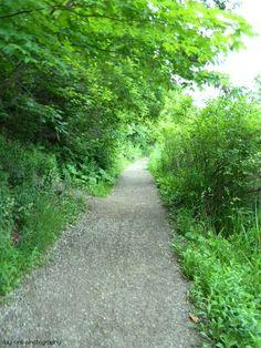 #Hiking #Trail #FredaMans