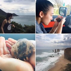 all the love in the world! possum rescue  amazing weekend at Lorne #australia #happy #vic #lorne #greatoceanroad #beach #love #animals #melbourne #life #gratful #vitamind #verybest #landscapes #cool by sah_hiromi