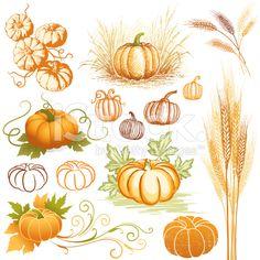 wheat and pumpkin
