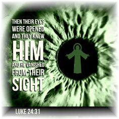 Then their eyes were opened and they knew Him; and He vanished from their sight. Gospel Of Luke, Luke 24, Bible Scriptures, Spiritual Quotes, Trust God, Jesus Christ, Catholic, Spirituality, Author